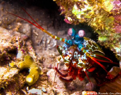 Debbie's Beach, Nha Trang.